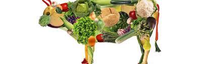 Bistecche vegana