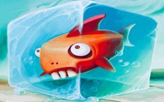 Pesce fresco o congelato